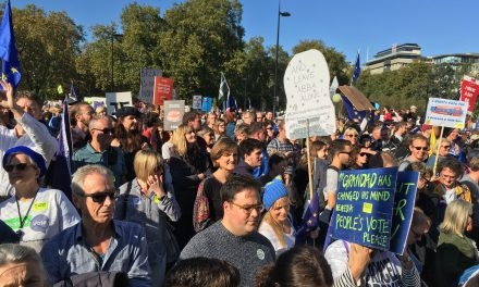 Brexit and the decimation of the NHS