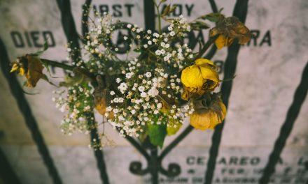 Audio essay: My loss