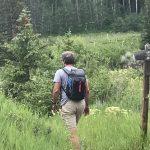 Rewilding General Practice